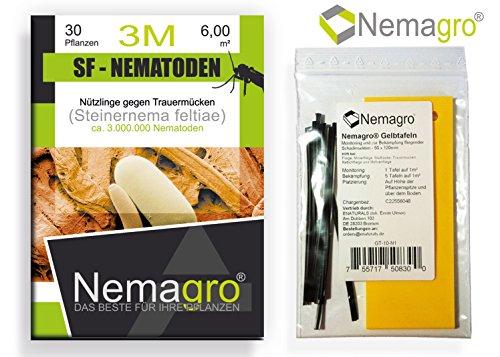 Ihre erste wahl gegen trauerm cken nemagro kombipack for Trauermucken nematoden